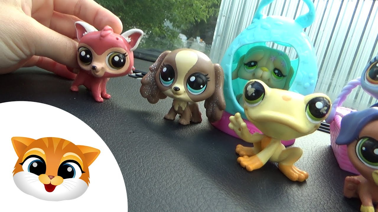 Pet Shop Week #12 - LPS jadą na wakacje | Movies for children