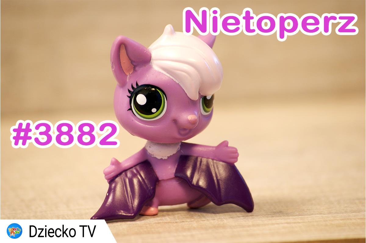 fioletowy_nietoperz_3882